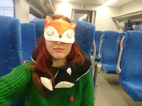 Avis oreiller 2 en 1 train